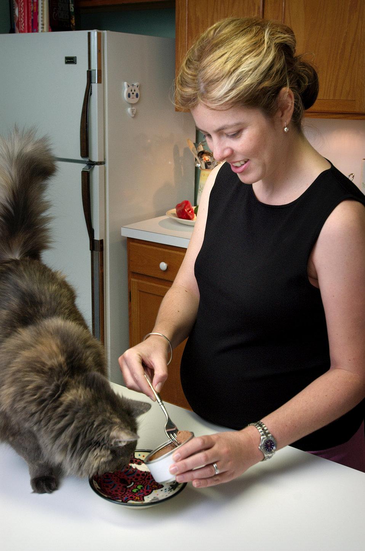 7 tipov, ako pripraviť mačku na príchod bábätka