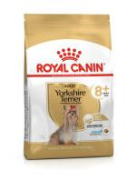 Royal Canin YORKSHIRE 8+