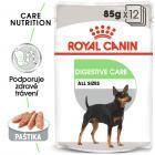 Royal Canin Digestive Care Dog Loaf - kapsička s paštikou pro psy s citlivým trávením