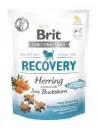 BRIT snack RECOVERY herring/sea buckthorn