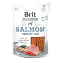 BRIT meaty jerky  SALMON protein bar